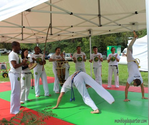 Forum-association-2015-capoeira