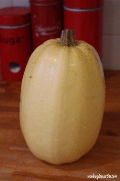 e-coccinelle-potimaron